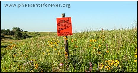 pf pollinator