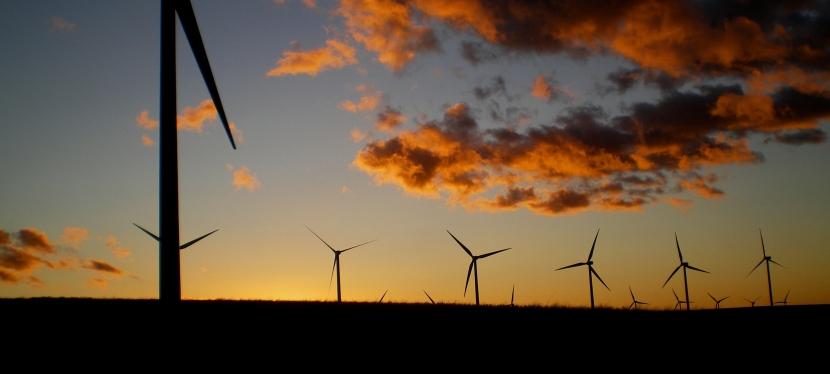Energy Development Act Meets Habitat Conservation(Maybe)