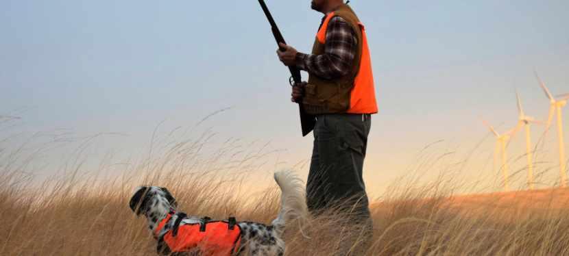 Pheasant Hunting the Walla Walla ValleyUplands