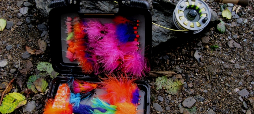 Think Pink for Silver Salmon on the Fly