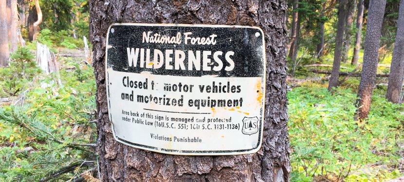 Wilderness Hues